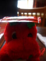 Rusty with tomato ketchup hat